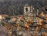Одна из церквей Беллинцоны