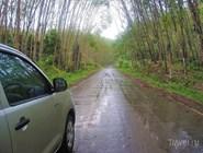 Дорога под дождем