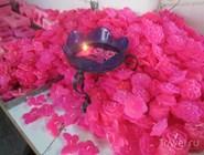 Розовый дом: сувениры
