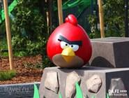 Сердито-грозные птицы