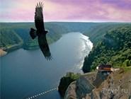 Природа. С высоты птичьего полета