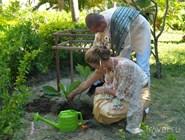 Анжелика и Иван сажают дерево в отеле Santhiya Resort and Spa Koh Phangan