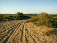 Пляж у поселка Веселовка