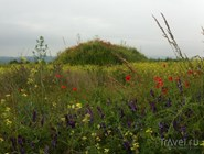 Цветущее болгарское поле