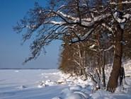 Зимний пейзаж под Выборгом