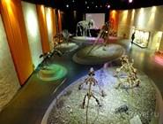 Экспозиция Музея пермских древностей
