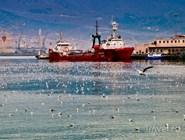 Корабли в Цемесской бухте