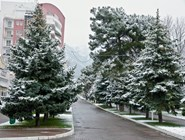 Геленджик под снегом