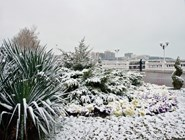Зима в Геленджике