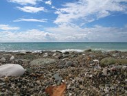 Галька на пляже Гагры