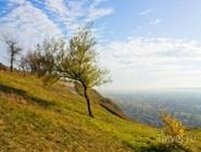 Природа в районе Кавказских Минеральных Вод