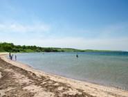На берегу лежат те самые целебные водоросли