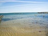 В мае-июне вода очень чистая и водорослей еще мало