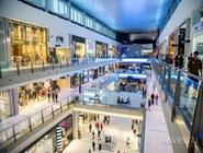 Посетители в Dubai Mall