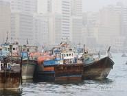 Специализированные рыболовецкие суда на пристани