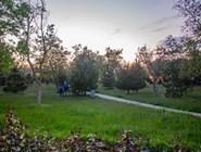 Парк очень опрятный и симпатичный