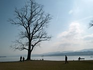 Берег Цюрихского озера