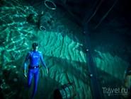 Подводное путешествие в Yas Waterworld