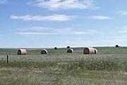 Провинция Альберта. Фото: just-so-site.com