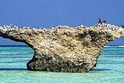 Острова Фарасан в 300 км от Джидды. Фото: AP
