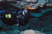 Подводная пещера. Фото: Дмитрий Челноков