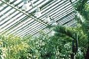 Оранжерея зооботанического сада в Казани. // kazan.org.ru