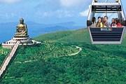 По канатной дороге можно добраться к одной из самых больших статуй Будды в мире. // np360.com.hk
