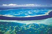 Большой барьерный риф закроют тентом