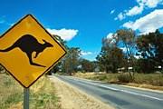 Австралия признана наиболее привлекательной для туристов страной. // GettyImages
