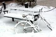 Только за ночь в Чехии выпало 30 см снега. // Ольга Агапова