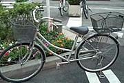 Общественным велосипедом можно будет пользоваться бесплатно. // newsru.com