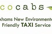 Экологически чистые такси совершенно бесплатны для клиентов. // totaltravel.co.uk