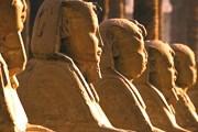Египет манит туристов круглый год. // GettyImages