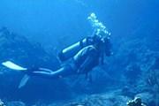 Водолазы расчистят дно до глубины 50 метров. // spim.ru