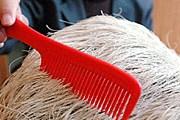 Волосы на камне можно даже причесать. // russian.people.com.cn
