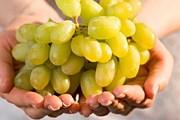 Кахети - главная область виноделия в Грузии. // GettyImages