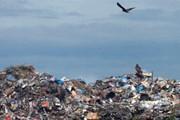 Капри завален мусором. // expert.ru