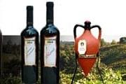 Вино - самый популярный болгарский сувенир. // cellarpamidovo.com