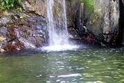 Новый заповедник - рай для экотуристов. // francomacorisanos.com