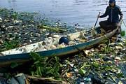 Отходы принесены водой с плохо организованных болгарских свалок. // img.timeinc.net