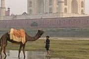 Смог душит Индию. // GettyImages