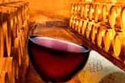 На фестивале посетители смогут попробовать разнообразные сорта вин. // vinit.net