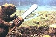 Бобров вернут в дикую природу. // imageshack.us