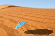 Туристов ждут в пустыне Негев. // GettyImages