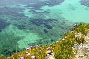 Эгейское море манит туристов. // Travel.ru