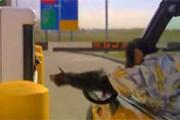 Кадр из ролика: шимпанзе заезжает на парковку в аэропорту. // Travel.ru