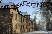 Посетители будут слушать гида через наушники. // auschwitz.org.pl