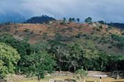 """Заповедник """"Монтекристо"""" затрагивает территорию Сальвадора, Гватемалы и Гондураса. // GettyImages"""