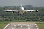 Взлетно-посадочная полоса аэропорта Дели не работала из-за ящериц и шакалов. // Airliners.net