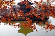 Багрово-красный – символический цвет Сеула. // GettyImages